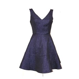Express Sparkle Skater Dress
